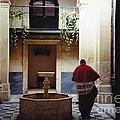Courtyard Visitor by Barbara Plattenburg