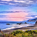 Cove On The Lost Coast by Dominic Piperata
