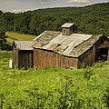 Coventry Barn by Fran Gallogly