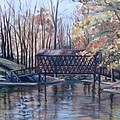Covered Bridge At Lake Roaming Rock by Donna Tuten