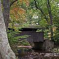 Covered Bridge By The Cottage  by Nancy Patterson