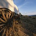 Covered Wagon At Bar 10 Ranch by Todd Gipstein