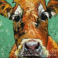 Cow 484 by Rosilyn Young
