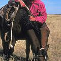 Cowboy In South Dakota by Carl Purcell