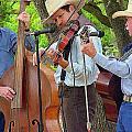 Cowboy Music by Nina Fosdick