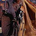 Cowboys Saddle And Chaps Detail by Natural Selection Craig Tuttle