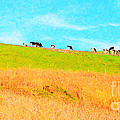 Cows On A Hill . 40d3430 . Painterly . Long Cut by Wingsdomain Art and Photography