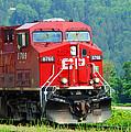 Cp Coal Train by Randy Harris