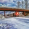 Cp Rail Coal Train Under Bridge Hdr by Randy Harris
