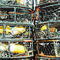 Crab Traps  by Kelly Manning