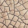 Cracked Earth On Desert Floor Bed by Cosmo Condina