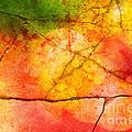 Cracked Kaleidoscope by Silvia Ganora