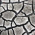 Cracked Mud by Bryan Noll