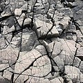 Cracked Rocks On Shore by Ted Kinsman