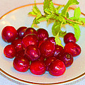 Cranberries And Mint by Kathy Clark