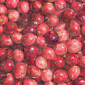 Cranberries by Dominic White