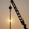 Crane At Rest by Stephen Estell