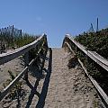Crane Beach by Renata Zau