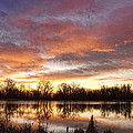 Crane Hollow Sunrise Reflections by James BO  Insogna