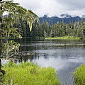 Crane Lake, Tongass National Forest by Konrad Wothe