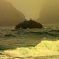 Crashing Waves And Fog by Judy Garrett