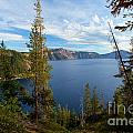 Crater Lake Through The Trees by Adam Jewell