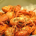 Crawdad Delight by Nimmi Solomon