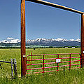 Crazy Mountain Ranch Gate by Roderick Bley