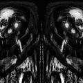 Black And White Mirror by Skip Nall