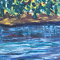 Creek In Sarasota by Mickey Krause