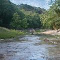 Creek Near Camp Verde  9107 by Fritz Ozuna