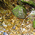 Creek Stones by Linda Hutchins