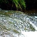 Creek Water Splash by Maria Urso