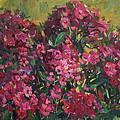Crimson Phloxes by Juliya Zhukova