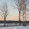 Crisp Winter Evening by Peggy  McDonald