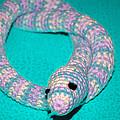 Crochet Snake In Blue by LeeAnn McLaneGoetz McLaneGoetzStudioLLCcom