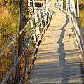 Crooked Bridge by Rrrose Pix