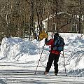 Cross Country Skier On Cape Cod by Matt Suess