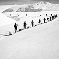 Cross Country Skiing by Granger