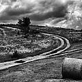 Cross-roads by Ferenc Farago Photograph Art