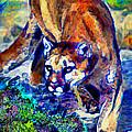 Crouching Cougar by Elinor Mavor