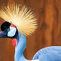 Crowned Crane by Heidi Smith