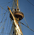 Crows Nest by Skip Willits