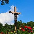 Crucifix In Indian River by Ted Kitchen