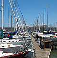 Cruise Ship And Sailboats Pier 39 by Connie Fox