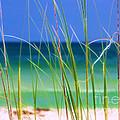 Crystal Beach by Judi Bagwell