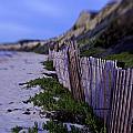 Crystal Cove Beach by Diana Cox