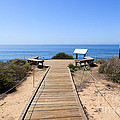 Crystal Cove State Park Ocean Overlook by Paul Velgos