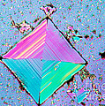 Crystal Salt by Eric V Grave