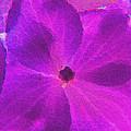 Crystelized Hydrangea Bloom Art by Debbie Portwood